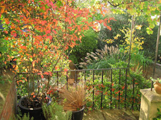 Karena Batstone Design: Karena's city garden Jardines de estilo moderno de Karena Batstone Design Moderno