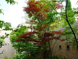 スモール東京ガーデン: NICO株式会社が手掛けた庭です。