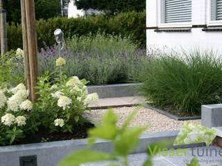 Strakke robuuste voortuin:  Tuin door Visser Tuinen
