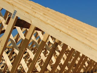 trusses: minimalist  by Perkins and Perry, Minimalist