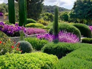 Śródziemnomorski ogród od Viveros Pou Nou Śródziemnomorski