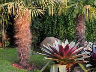 Jardines modernos de Loro Arquitetura e Paisagismo Moderno