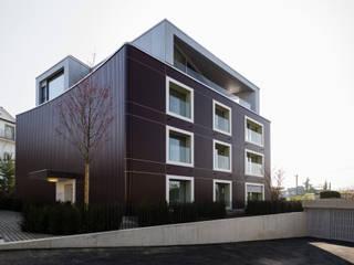 MFH Im Wiesengrund: moderne Häuser von Krayer Architektur GmbH