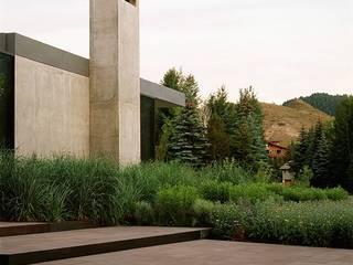 Landschaftsbau in und mit der Nature verbunden Moderner Garten von Ecologic City Garden - Paul Marie Creation Modern
