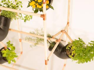 Garden  by Mono Studio
