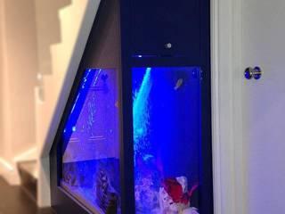 Under Stairs Aquarium:  Corridor & hallway by AquariumGroup