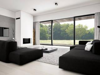Dom podmiejski - wnętrza: styl , w kategorii Salon zaprojektowany przez zwA Architekci