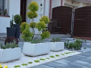 Ogród w stylu nowoczesnym od Projekt M Nowoczesny
