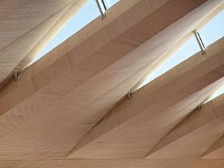 Roof:  Schools by Brisac Gonzalez Architects