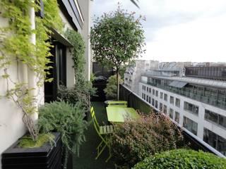 Mediterranean style balcony, veranda & terrace by FIORELLINO paysagiste Mediterranean