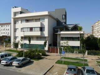Casas modernas de DELSO ARQUITECTOS Moderno