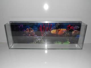 Akwarium Led: styl , w kategorii  zaprojektowany przez Visual Design