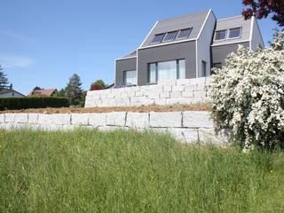 Neubau EFH Lupsingen Moderne Häuser von wohlgemuth & pafumi | architekten ag Modern