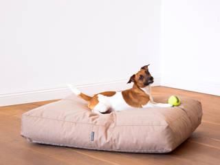 Cozydunes Pets:   von Cozydunes