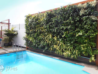 Walls by Jardineria 7 islas
