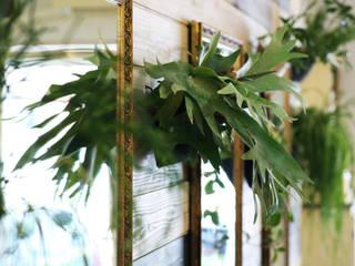 エコな室内壁面ガーデン オリジナルな商業空間 の SUNIHA UNIHA(サニハユニハ) オリジナル