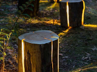 Cracked Log Lamps de Duncan Meerding Ecléctico