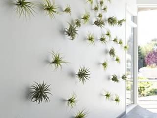 Corridor, hallway by Dotto Francesco consulting Green