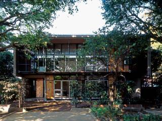 大銀杏の家: HAN環境・建築設計事務所が手掛けた家です。