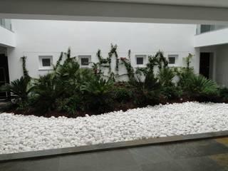 Зимний сад в стиле модерн от shfa Модерн