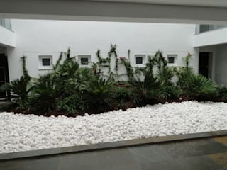 Modern Conservatory by shfa Modern