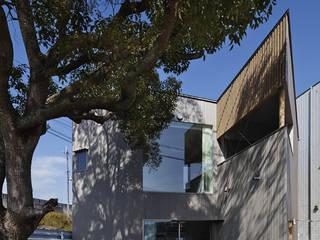公園南側から見る: 宮武淳夫建築+アルファ設計が手掛けた家です。