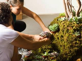 Rustic style garden by Luiza Soares - Paisagismo Rustic
