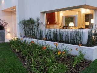 Modern style gardens by Estudio de Arquitectura Clariá & Clariá Modern