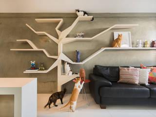 Sete Gatos em 50m² Salas de estar modernas por homify Moderno