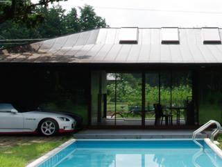 M-HOUSE トロピカルスタイルの プール の 3*D空間創考舎一級建築士事務所 トロピカル