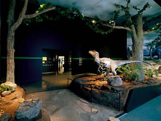 Ausschnitt Themenkabinett Tertiär:  Museen von Objekt-Gestaltung