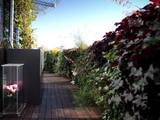 Il giardino verticale in terrazza: Terrazza in stile  di Sundar Italia