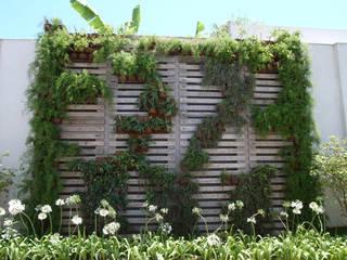 Jardins modernos por Denise Barretto Arquitetura Moderno