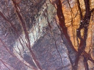 Rainforest:   door Wowglass