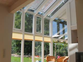 Modern conservatory by Dammann-Haus GmbH Modern