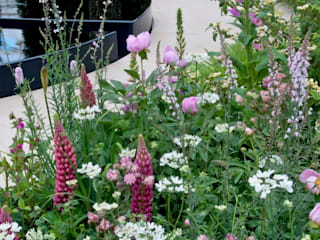 RHS CHELSEA 2015 - BEST FRESH GARDEN - PEOPLE'S CHOICE AWARD โดย Ruth Willmott คลาสสิค