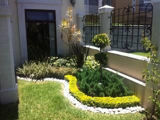 Vivero Sofia Mediterranean style garden