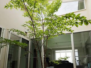 Garden by 有限会社タクト設計事務所, Modern