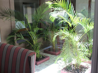 Jardins modernos por BAIRES GREEN MUEBLES Moderno