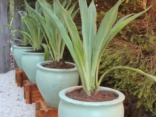 macetones Jardines asiáticos de BAIRES GREEN Asiático