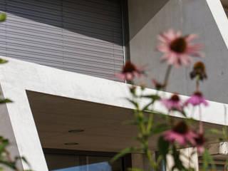Umbau Demenzstation in Reinach Moderne Krankenhäuser von wernli architektur ag Modern