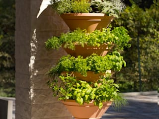 homify Balconies, verandas & terraces Plants & flowers