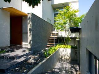 巣づくりの家 : 道家秀男建築設計事務所が手掛けた家です。