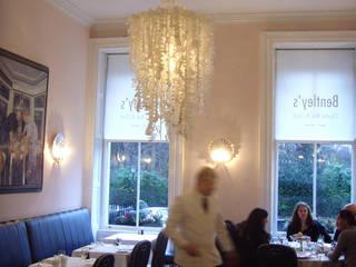 Projects Modern dining room by Rachel O'Neill Modern