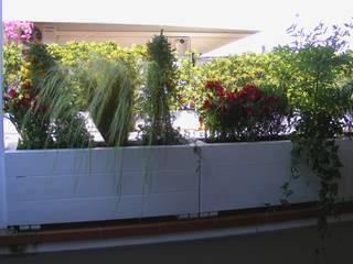 Verde abbraccio: una terrazza elegante in pieno centro cittadino. Balcone, Veranda & Terrazza in stile moderno di Tommaso Magaldi garden design Moderno