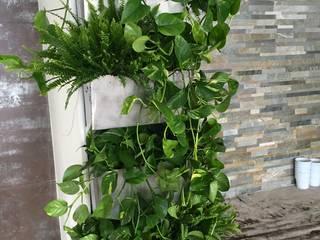 Parete verde verticale per interno. Negozi & Locali commerciali moderni di Tommaso Magaldi garden design Moderno
