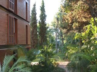 Taman Tropis Oleh Jacobo Lladó Estudio de Arquitectura Tropis
