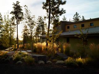 A wild garden in Washington State USA Taman Modern Oleh Bowles & Wyer Modern