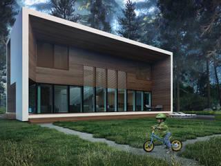 ДОМ В КИЕВЕ ALEXANDER ZHIDKOV ARCHITECT Дома в стиле минимализм