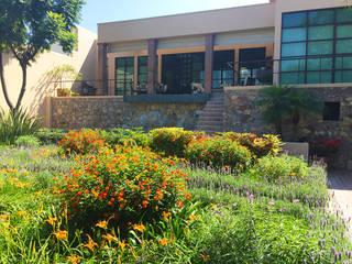 Terra Jardines de estilo moderno